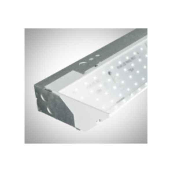 Series 11 LED Luminaire