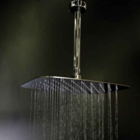 Eleganza 1874 Ceiling-Mount Tilting Rain Shower Head