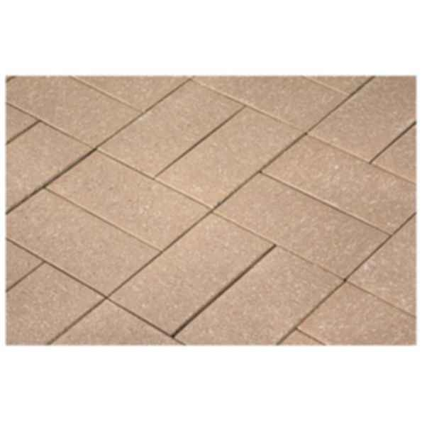 Chestnut Hill Tan Paver