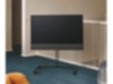 BeoVision Horizon Television