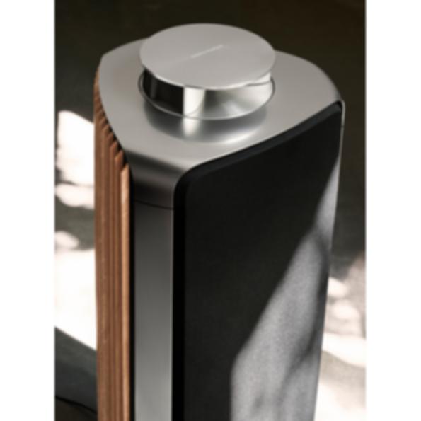 BeoLab 50 Speaker