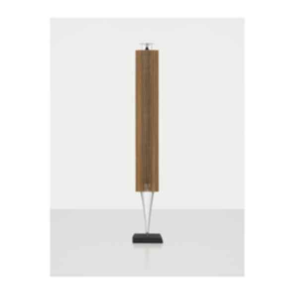 BeoLab 18 Speaker