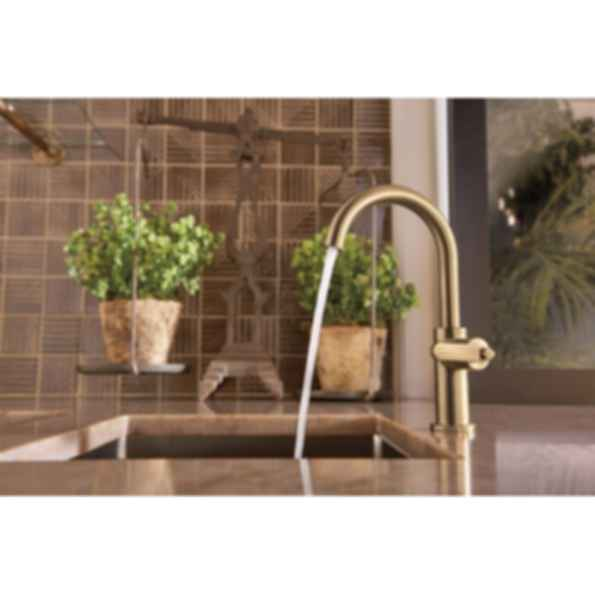Litze™ Bar Faucet with Arc Spout and Industrial Handle 61044LF