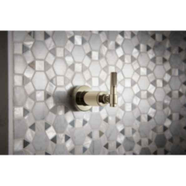 Litze™ Sensori® Volume Control Trim - Industrial Lever T66634