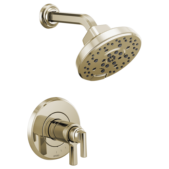 Levoir™ TempAssure® Thermostatic Shower Only Trim T60298