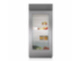 "36"" Classic Refrigerator with Glass Door BI-36RG/S"