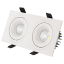 Double Spectri Downlight
