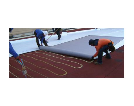 Roof TPO: Non-Insulated Gypsum Deck