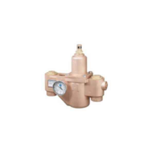 Emergency Fixtures and Valves EFX125-S19-2300