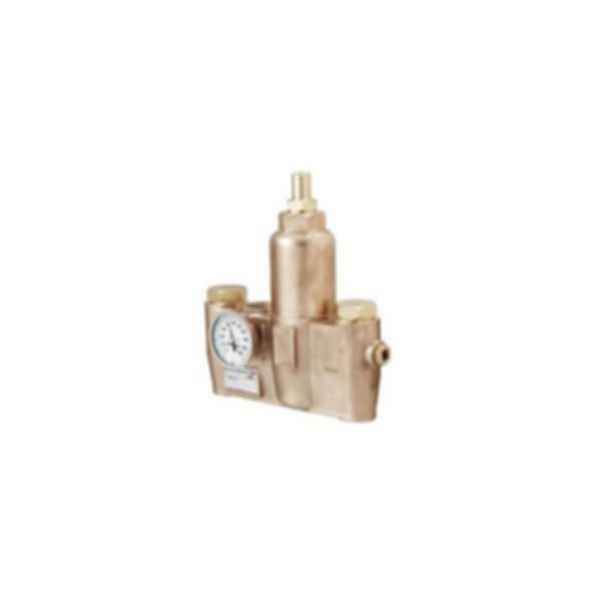 Emergency Fixtures and Valves EFX60-S19-2200