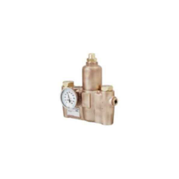 Emergency Fixtures and Valves EFX25-S19-2100