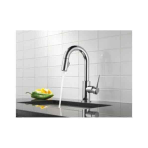 Kitchen Trinsic FG9959-DST