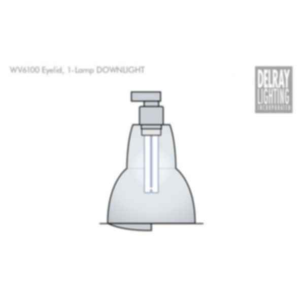 WV6100 Vertical Downlight by Delray Lighting