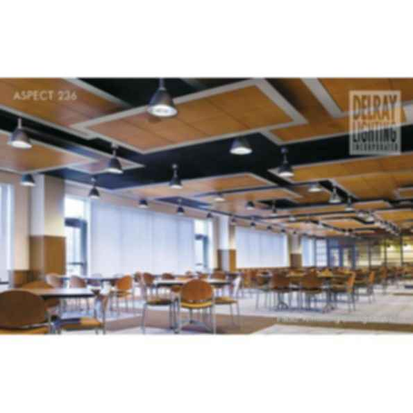 Aspect 236 by Delray Lighting
