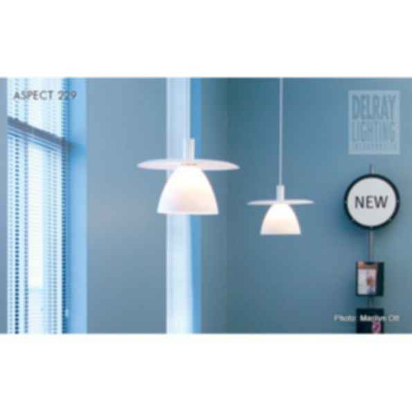 Aspect 229 by Delray Lighting