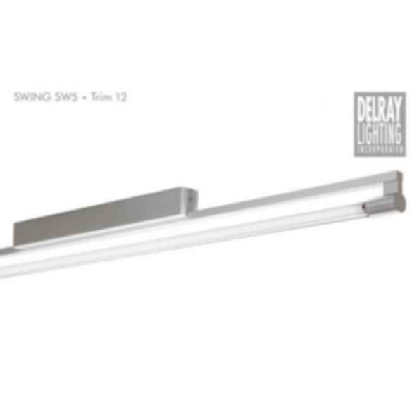 Swing SW5 Surface Mount, Trim 12, by Delray Lighting