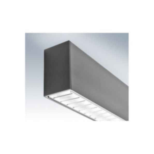 COLLIN Dual Distribution Luminaire