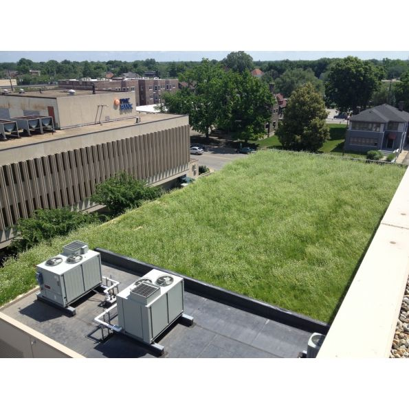 Omni Green Roof System