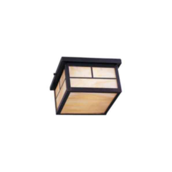 Coldwater 2-Light Outdoor Ceiling Mount Lighting