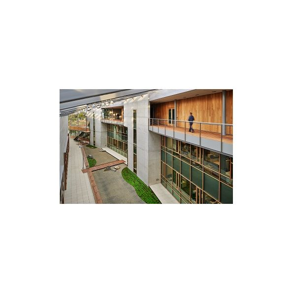 Timber Curtain Wall System