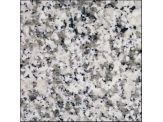 "12x12"" Bianco Sardo Granite Polished Tile - 3TL12X12-BS01"