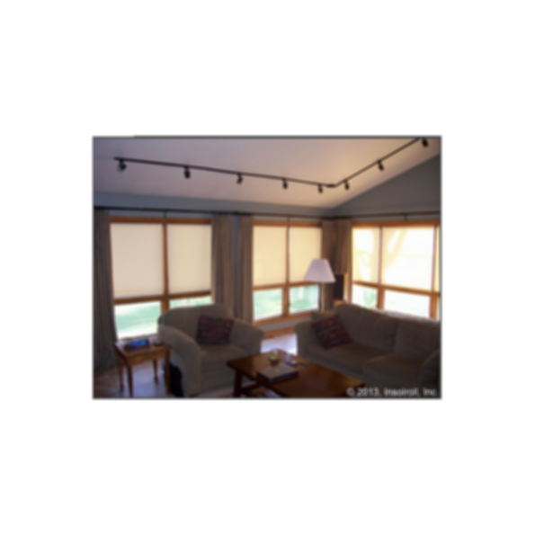 Decorative Window Shades