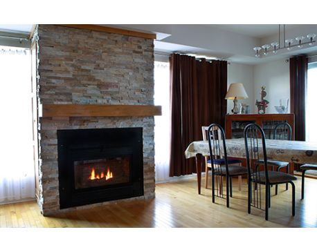 IFP-45 Condensing Fireplace, Condensing Furnace and Heat Recovery ...