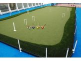 TheLawnCourt - Lawn Activity Court System